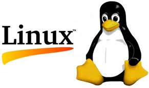 Linux Logo