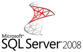 SQL Server 2008 Logo