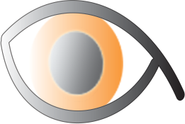 Nowtracker Logo - Orange Eye